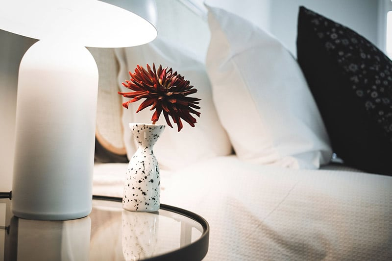 Matawhero Luxury Accommodation Gisborne Noir Cabin Interior